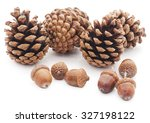 Ones And Acorns Isolated O...