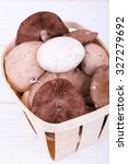 Small photo of edible mushrooms on a white wooden background. mycology. lat agaricus campestris et lat macrolepiota mastoidea