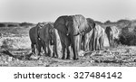 elephant herd. visible noise at ... | Shutterstock . vector #327484142