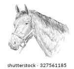 horse head sketch  | Shutterstock .eps vector #327561185