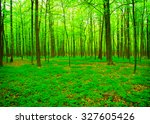 beautiful forest landscape in... | Shutterstock . vector #327605426