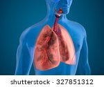 diseased lungs x ray view | Shutterstock . vector #327851312