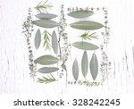 fresh herbs from garden   on... | Shutterstock . vector #328242245