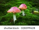 poisonous mushroom | Shutterstock . vector #328399628