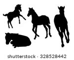 Collection Of Foal Silhouettes...