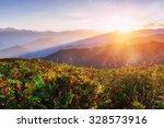 autumn landscape and snow... | Shutterstock . vector #328573916