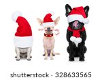 Stock photo group of santa claus dogs for christmas holidays eyes covered by the hat isolated on white 328633565