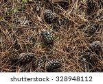 Cones On Dry Pine Needles