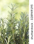 fresh rosemary in the garden ... | Shutterstock . vector #328949195