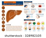 function and nutrition...   Shutterstock .eps vector #328982105