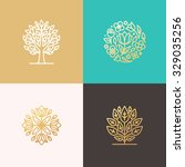 set of vector simple and... | Shutterstock .eps vector #329035256