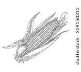 mature corn  hand drawn  vector ... | Shutterstock .eps vector #329150312
