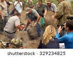 magaliesberg  south africa  ... | Shutterstock . vector #329234825