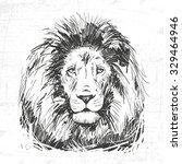 Hand Drawn Lion Head. See Also...