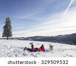 winter holiday fun. girl ...   Shutterstock . vector #329509532