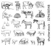 mammals. . hand drawn set of... | Shutterstock . vector #329658548