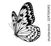 Vector Butterfly Idea Leuconoe...