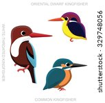 bird kingfisher set cartoon...   Shutterstock .eps vector #329748056