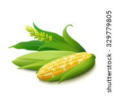cobs of yellow corn with white... | Shutterstock .eps vector #329779805