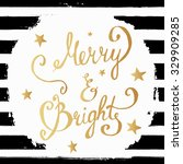 christmas merry and bright hand ... | Shutterstock .eps vector #329909285