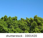 Landscape Photo Of The Tops Of...