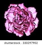 Clove Flower With Pink Petals...