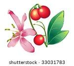 Flower  Honeysuckle