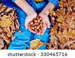 Acorns On Kid Palms