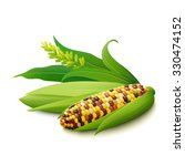 cobs of colorful indian corn ... | Shutterstock .eps vector #330474152