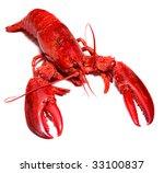 boiled lobster | Shutterstock . vector #33100837
