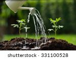 Sprouts Watered From A Watering ...