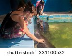 Small photo of IQUITOS, PERU - JUNE 19, 2015: Visitors watch Amazonian manatee (Trichechus inunguis) in Amazon Manatee Rescue Center near Iquitos, Peru