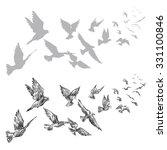 Flying Pigeons  Hand Drawn ...