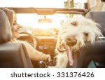 Stock photo woman and her labradoodle dog driving with the car concept about animals 331376426