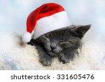 Stock photo christmas kitten 331605476