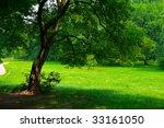 green garden  in the summer day | Shutterstock . vector #33161050