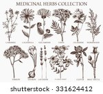 vector collection of hand drawn ... | Shutterstock .eps vector #331624412