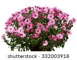 Bouquet Of Pink Flowers Of...