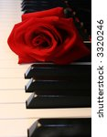 deep red rose on piano keys   Shutterstock . vector #3320246