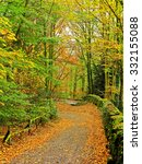View Of A Footpath In Autumn I...
