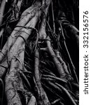 old tree skin | Shutterstock . vector #332156576