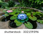 Blue Seramic Lotus   Feeling...