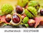Fresh Chestnuts On Background...
