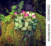 Small photo of Memorial to accidental death, Little Qualicum Falls Provincial Park, Vancouver Island, Canada