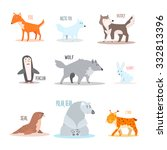 Arctic And Antarctic Animals...
