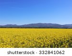 yellow field | Shutterstock . vector #332841062