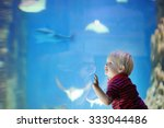 Toddler Boy Watches Fishes In...