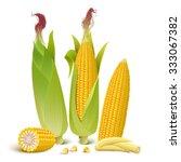 ripe corn cobs  baby corn  corn ... | Shutterstock .eps vector #333067382
