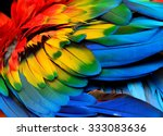 colorful of scarlet macaw bird... | Shutterstock . vector #333083636