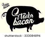 bacon studio vector... | Shutterstock .eps vector #333084896